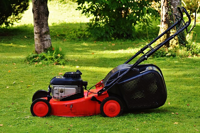 Benzínová sekačka na trávu