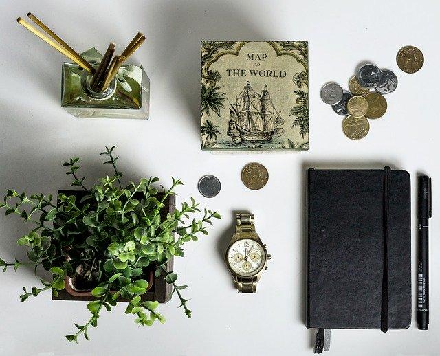Pokoj s rostlinami.jpg